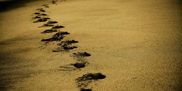 sandspor